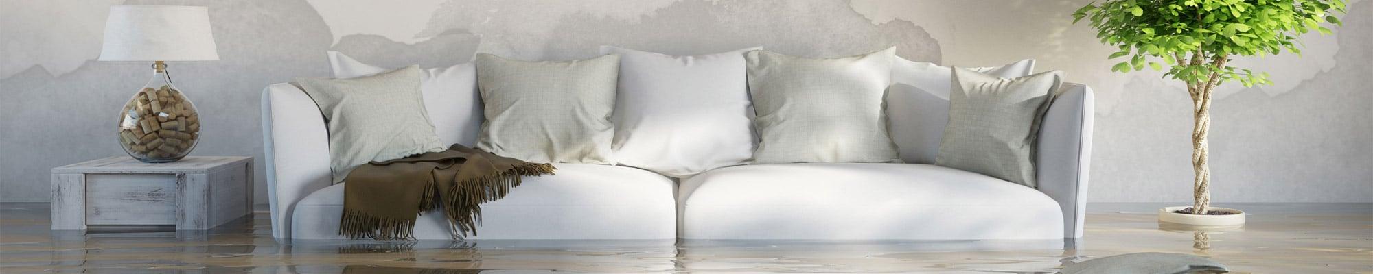 Home-Flooded-HCF-Banner-1